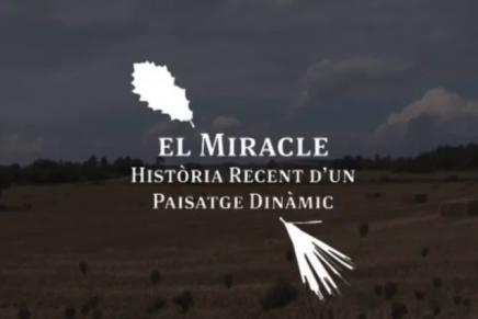 El paisatge del Miracle- Solsonès