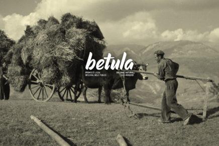 El projecte Betula